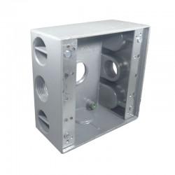 Caja Tipo RADWELL 2400 Con Salida 3-4 Pulgadas 3 Huecos